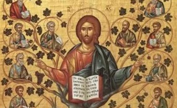 Jesús es la vid